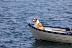 bigstock-Riding-A-Boat-8432614